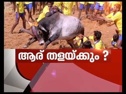 Jallikattu protests spread across Tamil Nadu | News Hour 19 Jan 2017