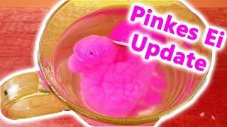 Pinkes Ei UPDATE VIDEO   Welches Tier ist aus Evas Ei geschlüpft   DIY Spaß Überraschung