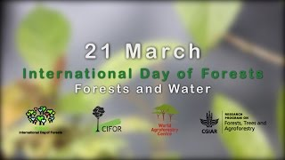 International Day of Forests 2016: A Conversation with the DGs of CIFOR and ICRAF (Part 1)