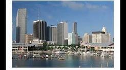 Miami Search Pro- Google Ad Words Certified Partner in Miami, FL.