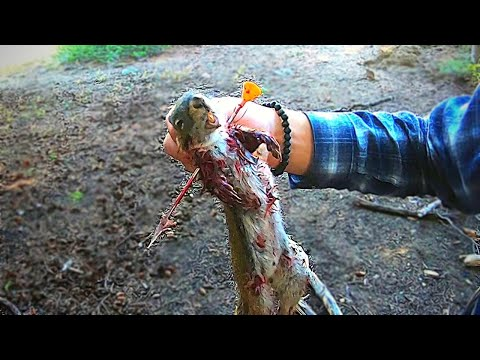 *GRAPHIC* Squirrel Blowgun Hunting-Clean'N'Cook