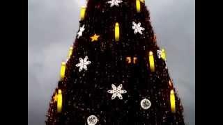 Weihnachtsbaum Dortmund 2011