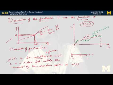 12.03. Extremization of the free energy functional variational derivatives