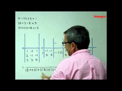 Sistema de ecuaciones 3x3 , regla de Cramer (cofactores). Por Nekagra