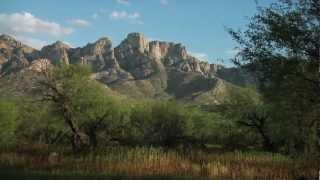 Introduction to Arizona