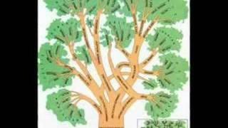 8th Foundational Falsehood of Creationism