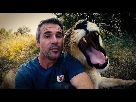 We have something to say... #AskMeg | The Lion Whisperer
