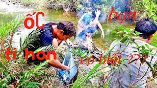 VTvlogs - hi cùng hai anh tìm ốc tí hon trong rừng sâu - Find snails in the deep forest