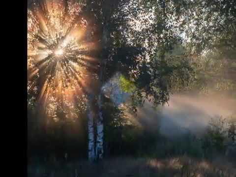 Осень дарит разлуку...  Стихи М. Булыгина, музыка и исполнение В. Ростова, видео С. Полыгаловой