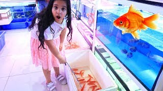 Catch Real Fish with Pinkfong Fishing Toys