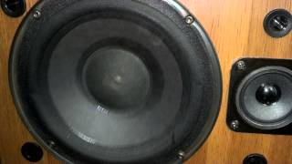 Bose 401 bass I love you bass test