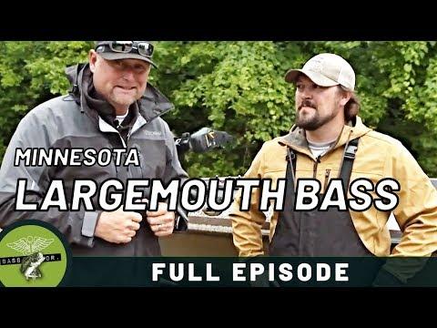 Jason Lambert and Kyle Wood slam some big Minnesota Largemouth