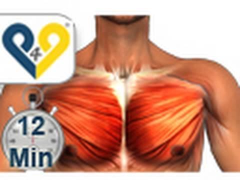 Brustmuskeltraining - YouTube