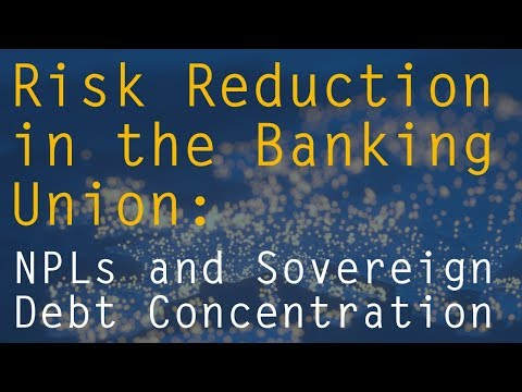Risk Reduction in the Banking Union: NPLs and Sovereign Debt Concentration