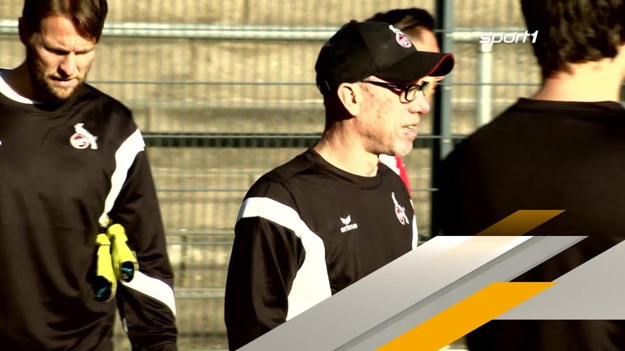 Hammer! Peter Stöger neuer Trainer bei Borussia Dortmund | SPORT1