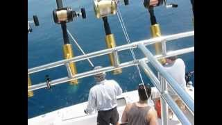 4 13 12 KEY WEST SAIL AND DOLPHIN FISHING JOHN ASABELL H 264 HD for You Tube