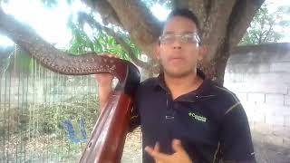 La Venezuela Harpo II