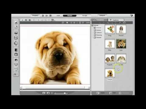 How To Make A Talking Dog Video: Talking Dogs And Animals