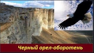 Черный Орел-Оборотень  № 2176