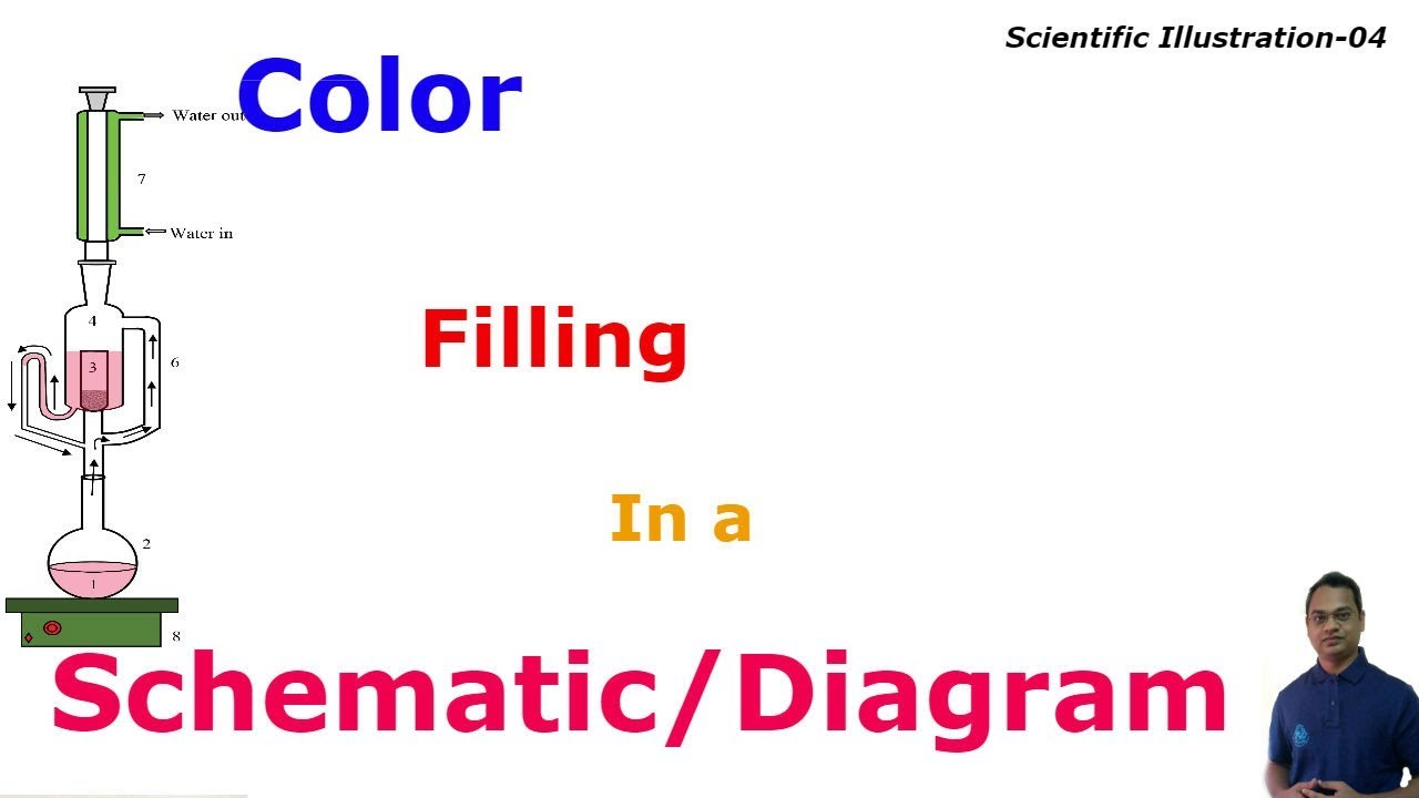 Color Filling in a Schematic/ Diagram with Photoshop | Scientific ...