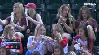 We Support Baseball Selfie Cows