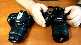 Обзор камеры Nikon D3100 от penall com