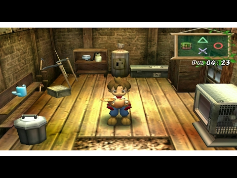 Harvestmoon A Wonderful Life:The Most Awaited Gift