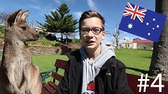 Korbinians YFU-Austauschjahr in Australien