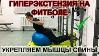 Разгибание спины на фитболе или гиперэкстензия. Упражнения для укрепления мышц спины!