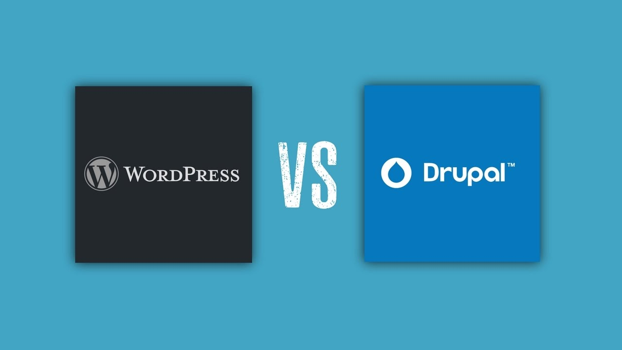 Drupal Vs WordPress - Which Is The Best CMS?