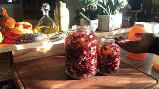 Infusing Cranberry Honey