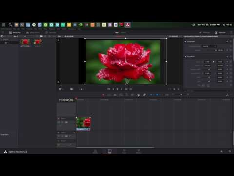 Blackmagic Forum • View topic - DaVinci Resolve on Linux