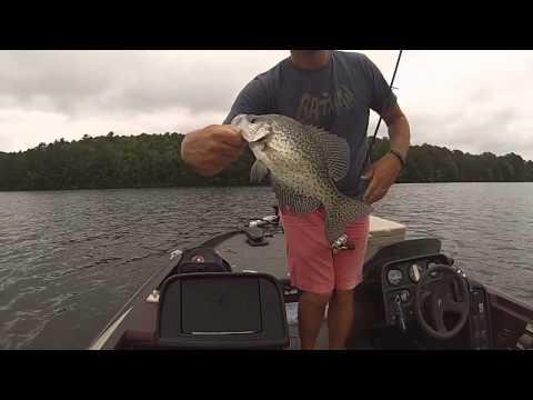Lake Hamilton Crappie And Bream Fishing