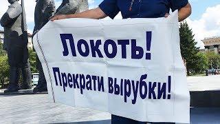 Три месяца в пикете, но Путин хороший!?