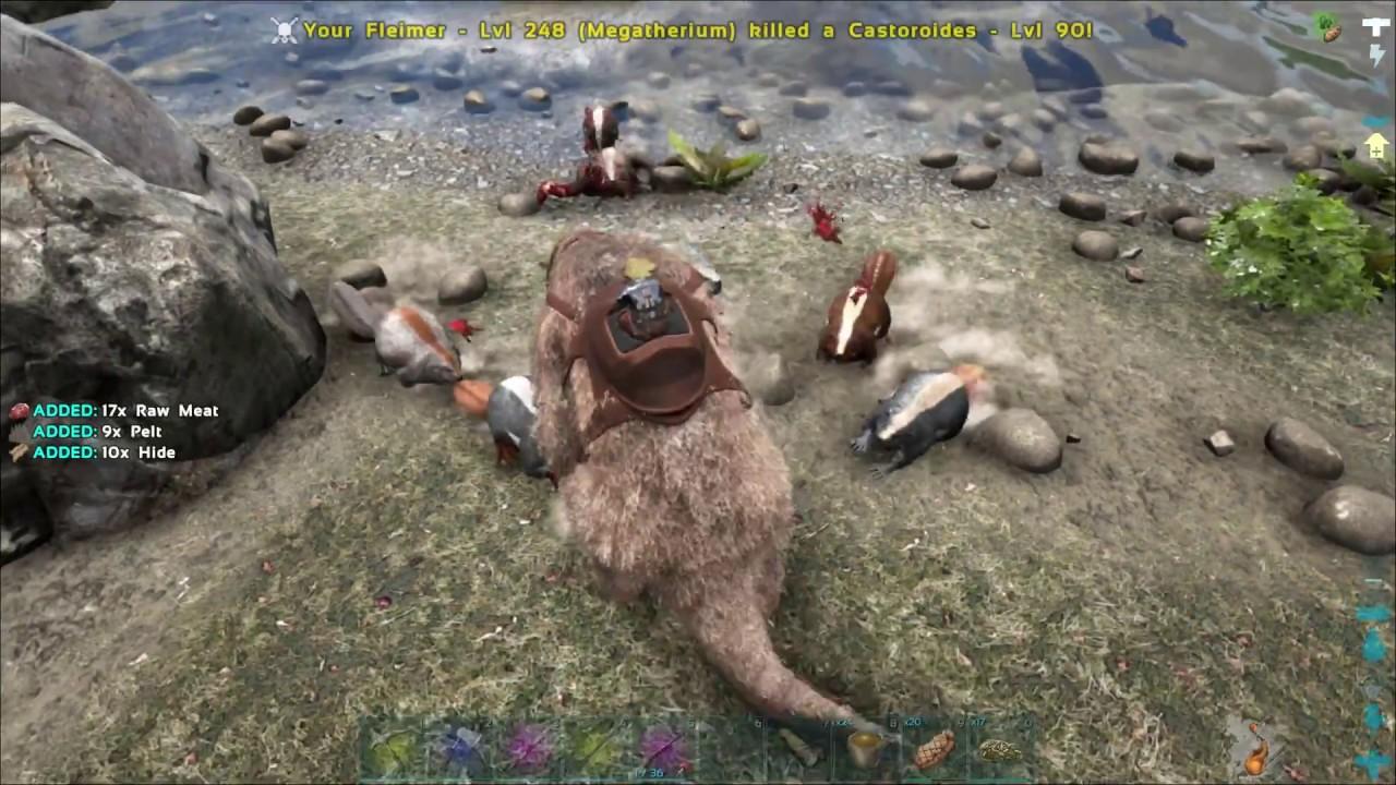 How to make beavers very angry omg ark ragnarok youtube how to make beavers very angry omg ark ragnarok malvernweather Choice Image