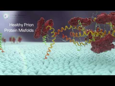 How might antibody treatment work for Creutzfeldt-Jakob disease