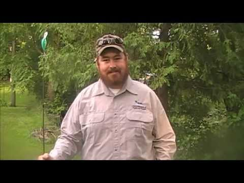 Do You Need A License To Fish In Ontario? from YouTube · Duration:  1 minutes 1 seconds  · 60 views · uploaded on 17.07.2017 · uploaded by Sweet Home