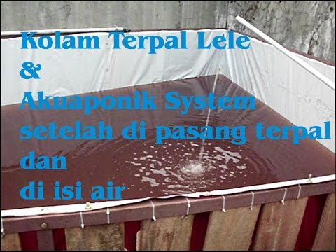 Akuaponik sistem, Tahap pengisian Air Kolam