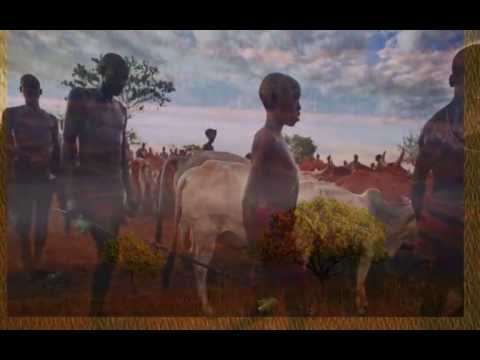 the gullah journey