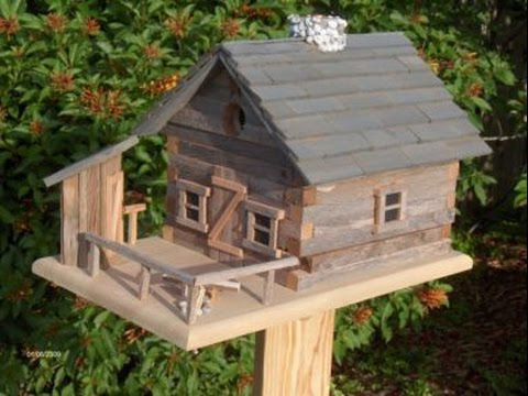 birdhouse designs for different species || the birdhouse - youtube