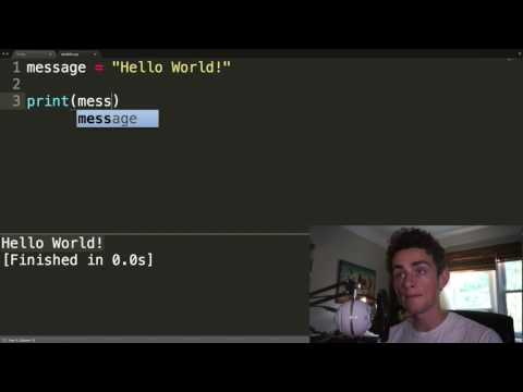 HOW TO PROGRAM 2: VARIABLES