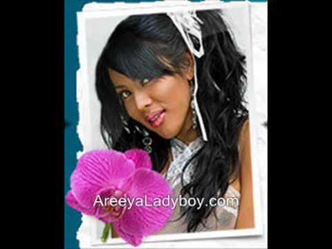 the hot areya porn star