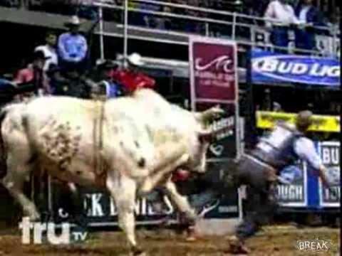kenhvideo.com - Người đàn ông bị ngất khi thi đấu bò tót