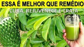 5 Folhas Poderosas Para Sua Saúde