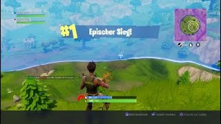 Fortnite Battle Royal Glitch + Win