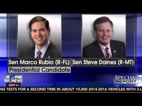 Montana Senator Steve Daines Endorses Marco
