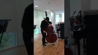 HoZhongZeJames_IBDP_D.Dragonetti - Waltz No.7 performance