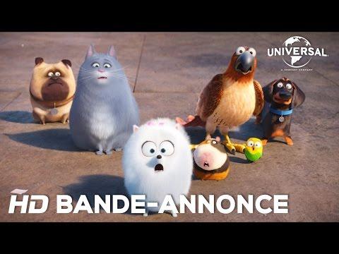 Comme Des Bêtes / Bande-annonce officielle 2 VOST [Au cinéma le 27 juillet 2016] streaming vf