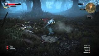 Ведьмак убил дух леса