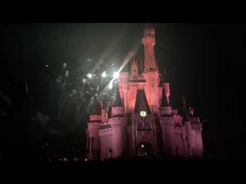 Disney World Vacation | Vlog 12 | Magic Kingdom Electrical Light Parade and Wishes!